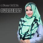 burbery-mint