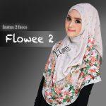 Flowee-2-abu
